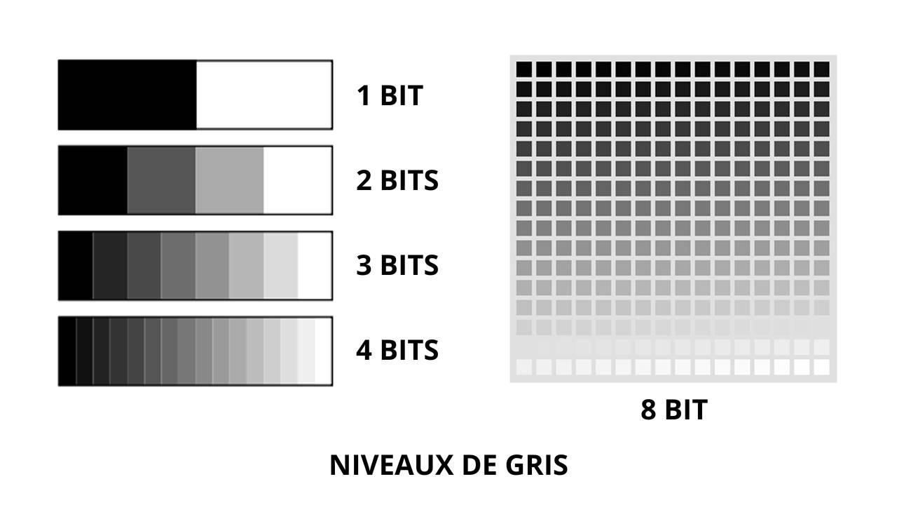 nn_pixel_GRIS_00000